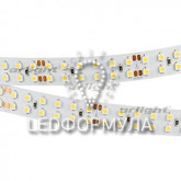 Лента RT 2-5000 24V Cool 8K 2x2 (3528, 1200 LED, LUX)