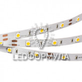 Лента RT 2-5000 12V Day White (5060, 150 LED,LUX)+ (ARL, Открытый)