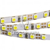 Лента RT 2-5000 12V Day White-5mm 2x (3528,600 LED